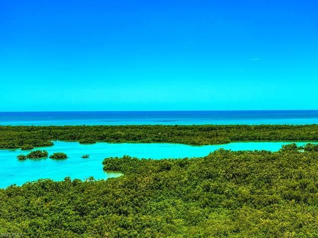 1001 Arbor Lake Dr #704, Naples, FL 34110 (MLS #220006275) :: Kris Asquith's Diamond Coastal Group