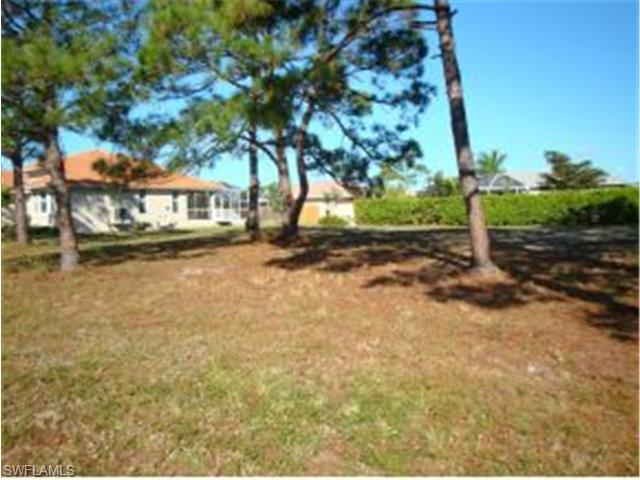 29 Tahiti Rd, Marco Island, FL 34145 (#214065963) :: Homes and Land Brokers, Inc