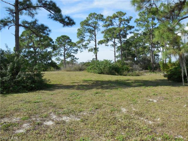 20020 Riverbrooke Run, Estero, FL 33928 (#215001117) :: Homes and Land Brokers, Inc