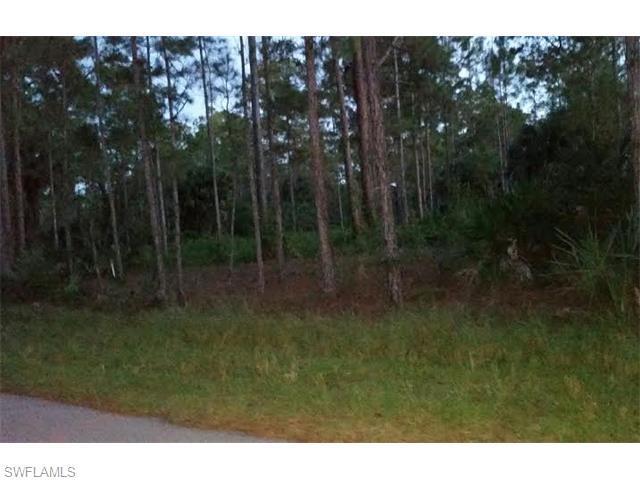 1840 20th Ave NE, Naples, FL 34120 (MLS #215062537) :: The New Home Spot, Inc.