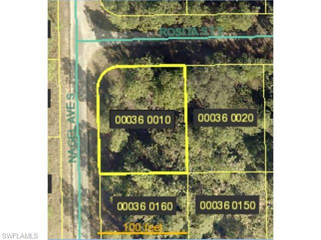 1134 Rosita St E, Lehigh Acres, FL 33974 (#215067044) :: Homes and Land Brokers, Inc