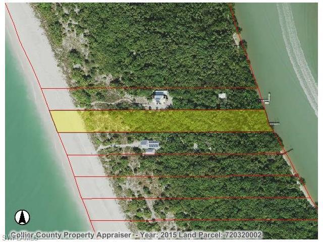 10175 Keewaydin Island, Naples, FL 34101 (MLS #215071124) :: The New Home Spot, Inc.