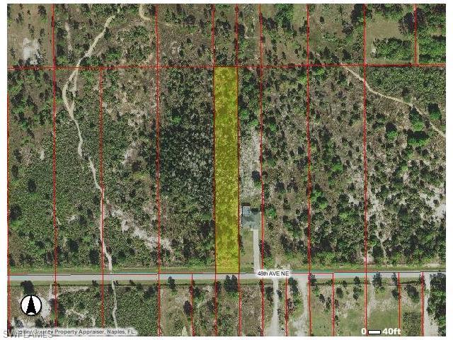 48 Ave NE, Naples, FL 34120 (MLS #216023921) :: The New Home Spot, Inc.