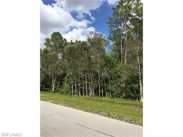 24543 Red Robin Dr, Bonita Springs, FL 34135 (MLS #216026100) :: The New Home Spot, Inc.