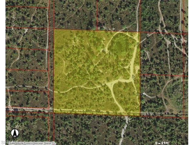 Woodland Grade Rd, Naples, FL 34117 (MLS #216029190) :: The New Home Spot, Inc.