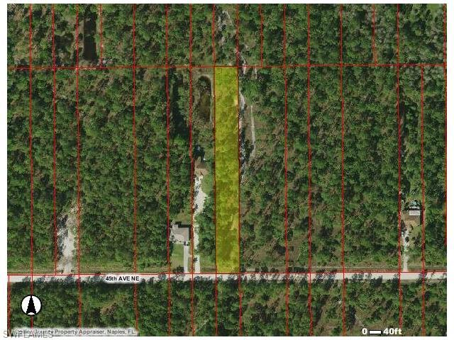 45th Ave NE, Naples, FL 34120 (#216041465) :: Homes and Land Brokers, Inc