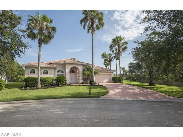 21500 Belhaven Way, Estero, FL 33928 (#216043512) :: Homes and Land Brokers, Inc