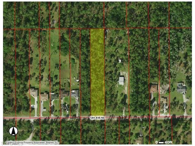 3593 12th Ave NE, Naples, FL 34120 (#216044033) :: Homes and Land Brokers, Inc