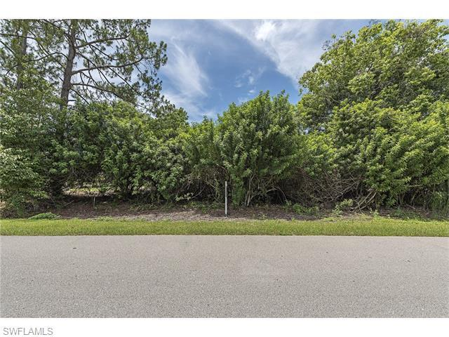 5384 Coral Wood Dr, Naples, FL 34119 (MLS #216044170) :: The New Home Spot, Inc.