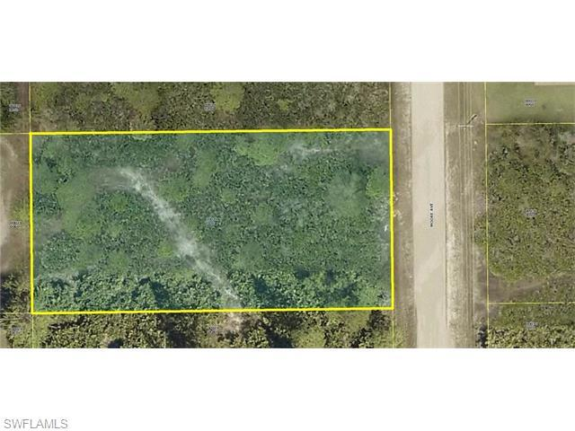 213 Moore Ave, Lehigh Acres, FL 33936 (MLS #216044409) :: The New Home Spot, Inc.