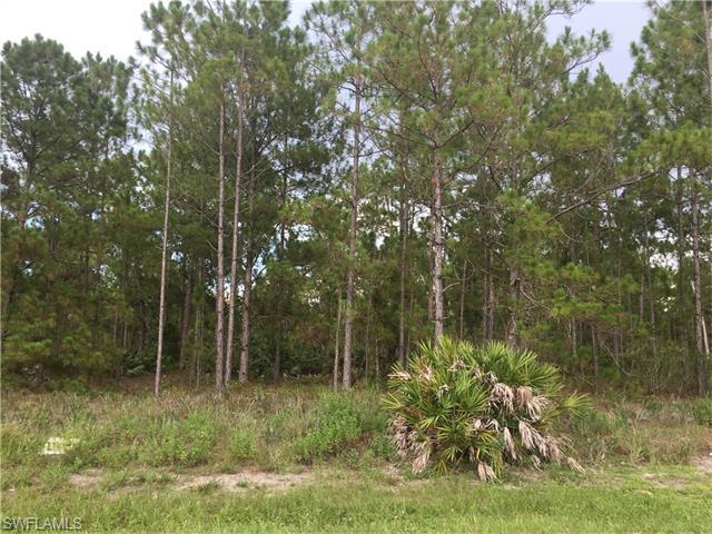 0000 16th St NE, Naples, FL 34120 (MLS #216045070) :: The New Home Spot, Inc.
