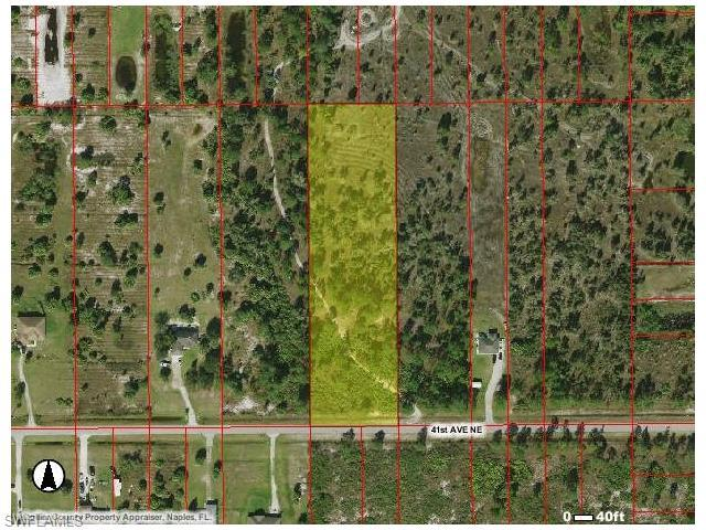 41st Ave NE, Naples, FL 34120 (#216045206) :: Homes and Land Brokers, Inc
