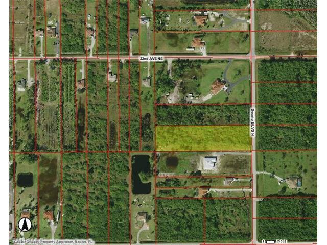 Desoto Blvd N, Naples, FL 34120 (MLS #216047085) :: The New Home Spot, Inc.