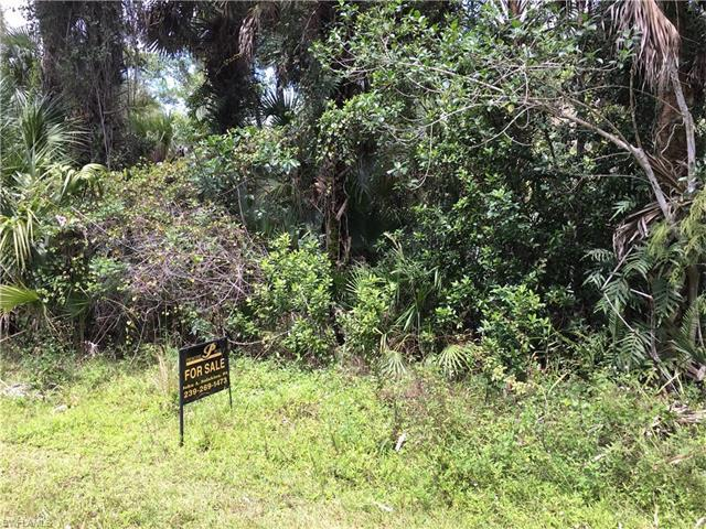 XXXX 39TH Ave NE, Naples, FL 34120 (#216047246) :: Homes and Land Brokers, Inc