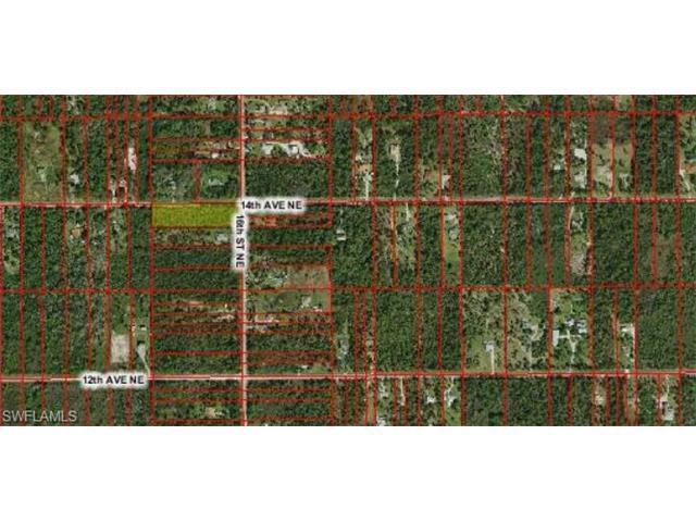 xxx 16th St NE, Naples, FL 34120 (MLS #216047400) :: The New Home Spot, Inc.