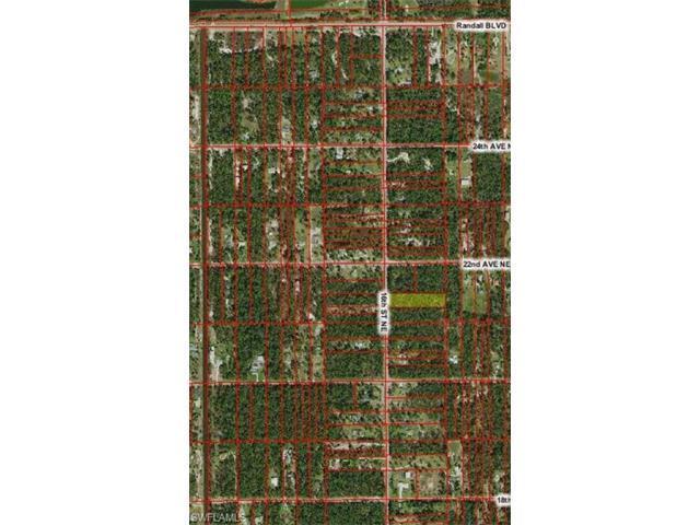xxx 16th St NE, Naples, FL 34120 (#216047408) :: Homes and Land Brokers, Inc