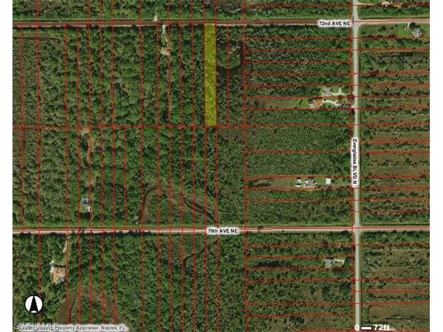 2970 72nd Ave NE, Naples, FL 34120 (#216048405) :: Homes and Land Brokers, Inc