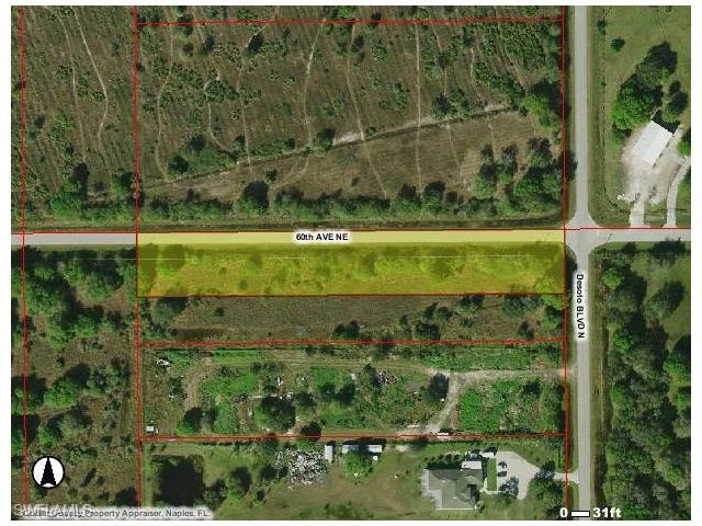 60th Ave NE, Naples, FL 34120 (#216051562) :: Homes and Land Brokers, Inc