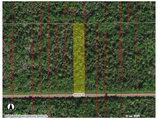 xxx 34th Ave SE, Naples, FL 34117 (MLS #216051778) :: The New Home Spot, Inc.