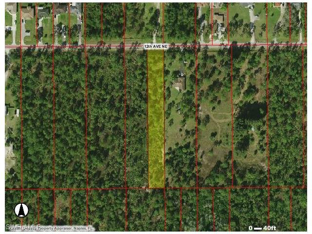 3620 12th Ave NE, Naples, FL 34120 (#216051888) :: Homes and Land Brokers, Inc