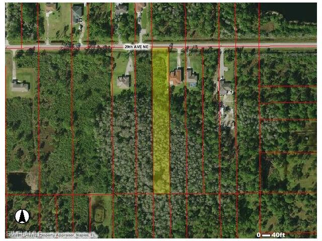 4360 29th Ave NE, Naples, FL 34120 (#216053287) :: Homes and Land Brokers, Inc