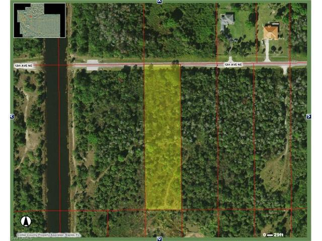 2370 12th Ave NE, Naples, FL 34120 (#216056756) :: Homes and Land Brokers, Inc