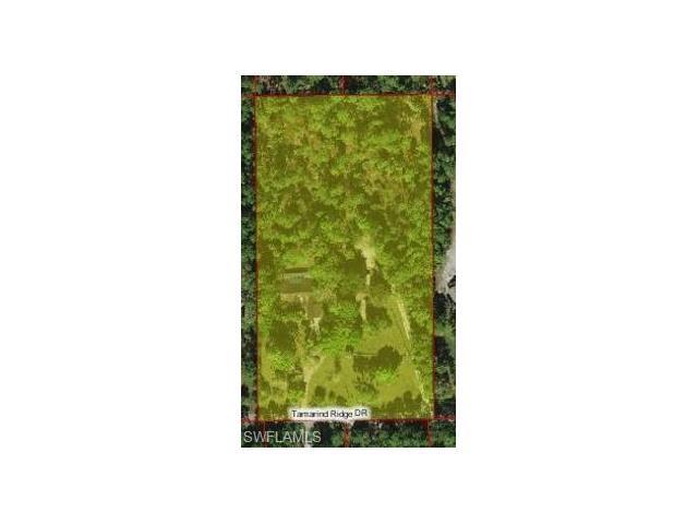 4943 Tamarind Ridge Drive, Naples, FL 34119 (#216057061) :: Homes and Land Brokers, Inc