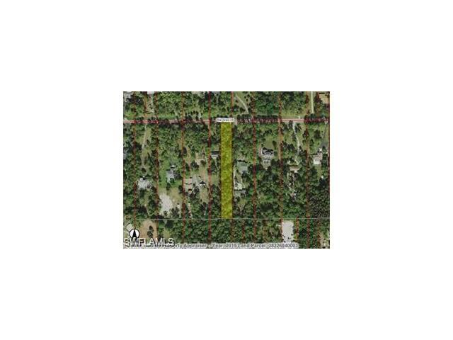 Star Grass Ln, Naples, FL 34116 (#216059975) :: Homes and Land Brokers, Inc