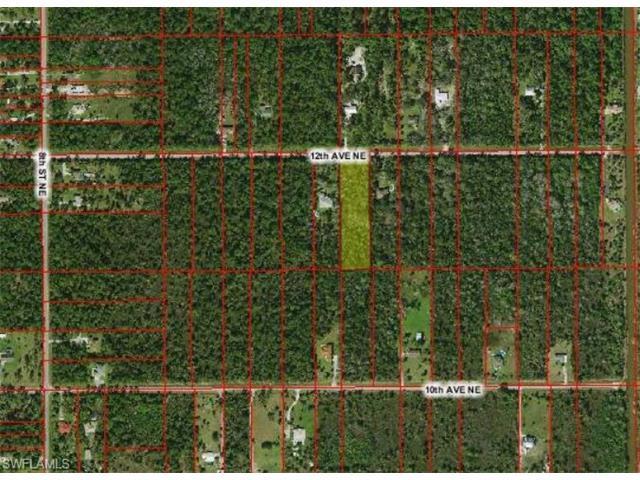 xxx 12th Ave NE, Naples, FL 34120 (MLS #216060133) :: The New Home Spot, Inc.