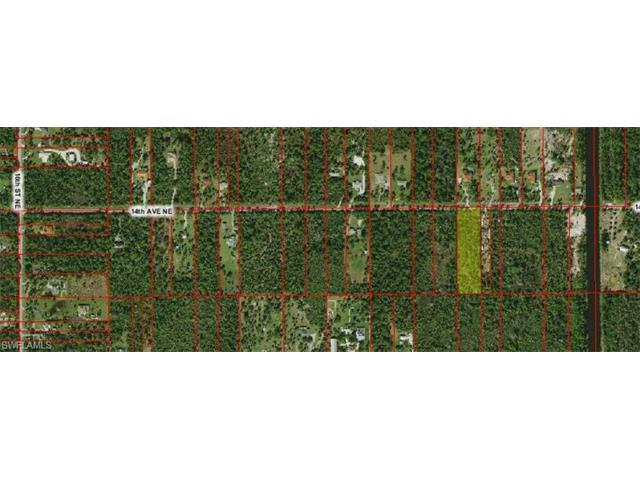 xxx 14th Ave NE, Naples, FL 34120 (#216060136) :: Homes and Land Brokers, Inc
