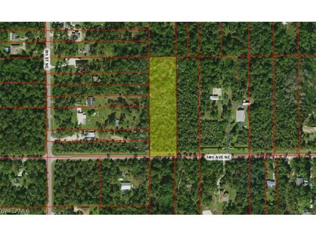 921 14th Ave NE, Naples, FL 34120 (MLS #216060138) :: The New Home Spot, Inc.