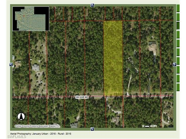 000 12th Ave NE, Naples, FL 34120 (#216060328) :: Homes and Land Brokers, Inc
