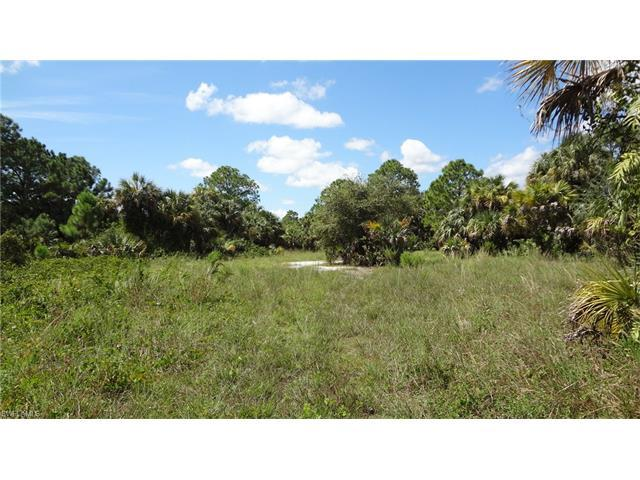 4377 8th St NE, Naples, FL 34120 (#216060670) :: Homes and Land Brokers, Inc