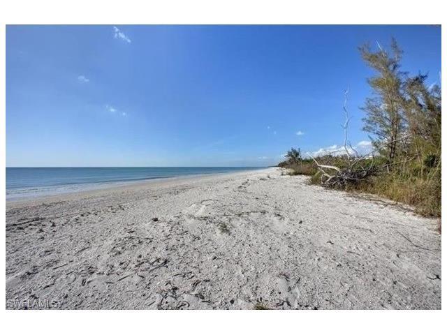 10565 Keewaydin, Naples, FL 34103 (MLS #217001787) :: The New Home Spot, Inc.