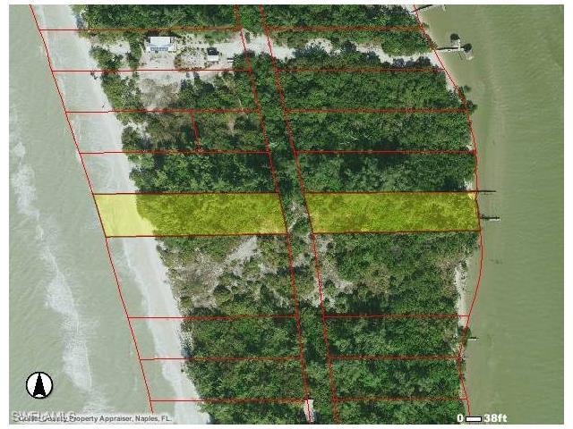 11303 Keewaydin, Naples, FL 34101 (MLS #217003492) :: The New Home Spot, Inc.