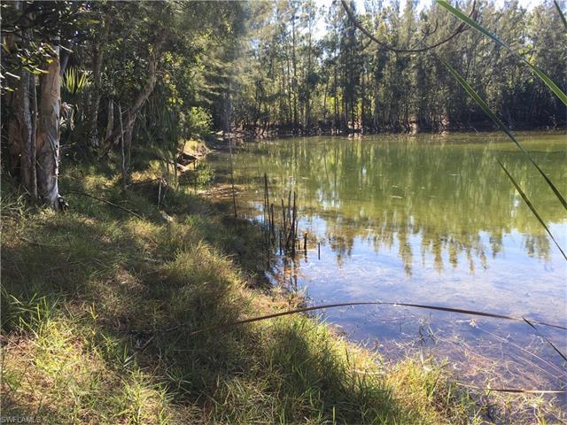 24476 Golden Eagle Ln, Bonita Springs, FL 34135 (#217008385) :: Homes and Land Brokers, Inc