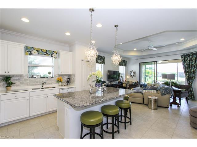 21547 Cascina Dr, Estero, FL 33928 (MLS #217011112) :: The New Home Spot, Inc.