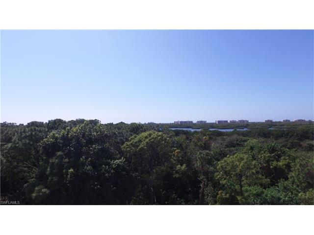 254 Audubon Blvd, Naples, FL 34110 (MLS #217016079) :: The New Home Spot, Inc.