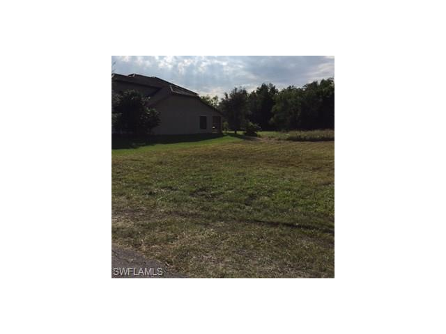 18319 Royal Hammock Blvd, Naples, FL 34114 (MLS #217016863) :: The New Home Spot, Inc.
