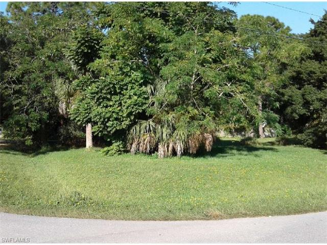 10025 Carolina St, Bonita Springs, FL 34135 (MLS #217025503) :: The New Home Spot, Inc.