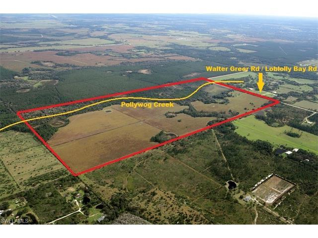 Loblolly Bay Rd, Labelle, FL 33935 (#217026901) :: Homes and Land Brokers, Inc