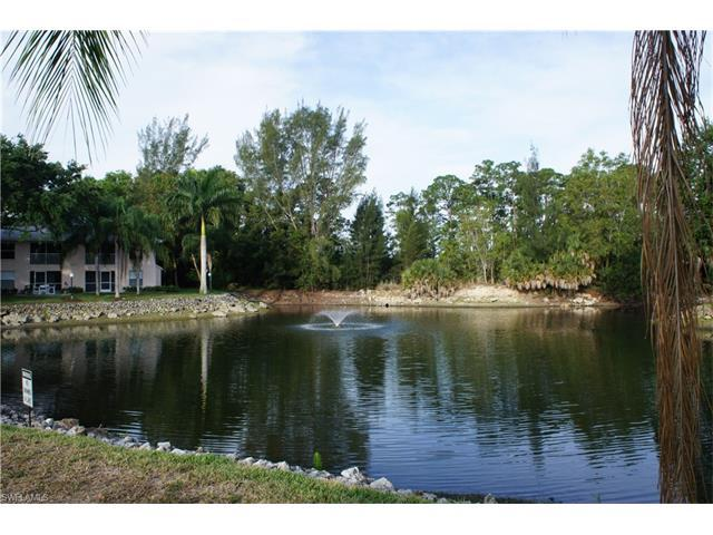 28161 Pine Haven Way #131, Bonita Springs, FL 34135 (#217028872) :: Homes and Land Brokers, Inc