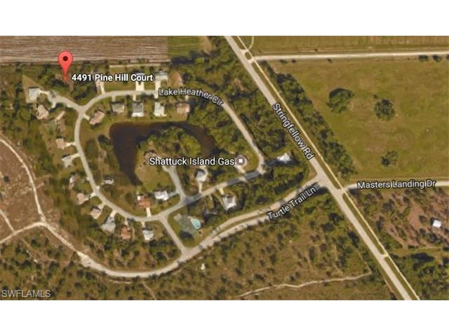 4491 Pine Hill Ct, Other, FL 33956 (MLS #217031634) :: The New Home Spot, Inc.
