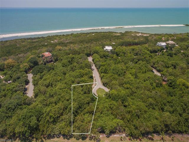 125 Wild Cherry Ln, Marco Island, FL 34145 (MLS #217033497) :: The New Home Spot, Inc.