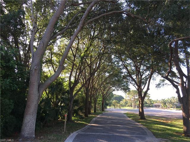 88 Cajeput Dr, Naples, FL 34108 (MLS #217034686) :: The New Home Spot, Inc.