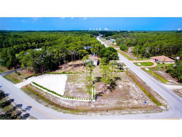 9796 Strike Ln, Bonita Springs, FL 34135 (#217034739) :: Homes and Land Brokers, Inc