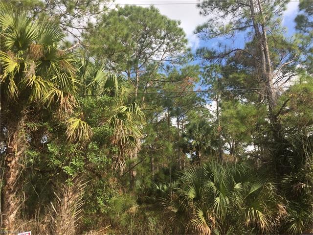 3060 Woodstock Ave, Naples, FL 34120 (MLS #217035109) :: The New Home Spot, Inc.