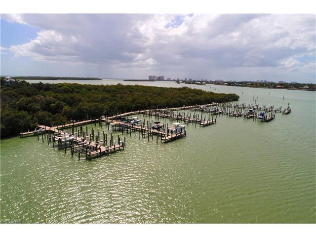 1150 Blue Hill Creek Dr, Marco Island, FL 34145 (MLS #217036416) :: The New Home Spot, Inc.