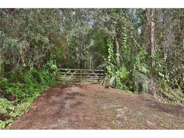 12084 Honeysuckle Rd, Fort Myers, FL 33966 (MLS #217039428) :: The New Home Spot, Inc.