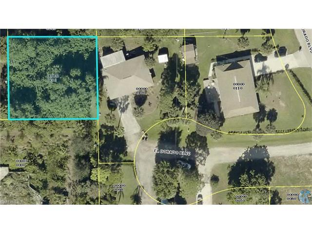 23436 Coconut Rum Ct, Bonita Springs, FL 34134 (MLS #217040587) :: The New Home Spot, Inc.